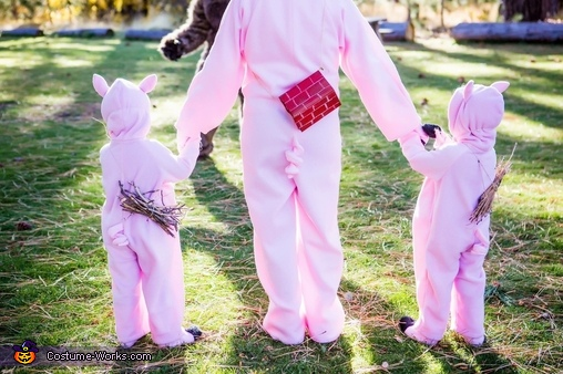 Three little pigs, Three Little Pigs and the Big Bad Wolf Costume