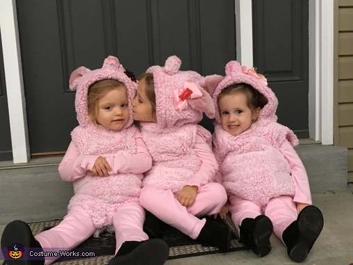 These hams too sweet to eat!, Three Little Pigs and The Big Bad Wolf Costume