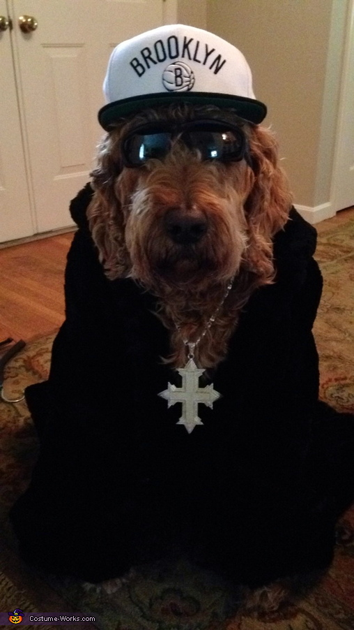 Thug Dog Costume