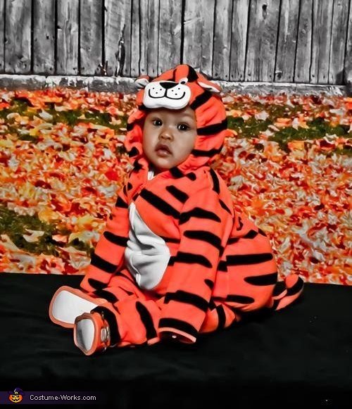 Tiger Baby Costume