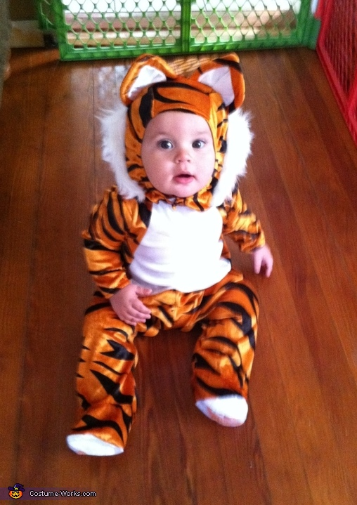 sc 1 st  Costume Works & Tiger Baby Costume