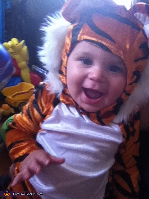 cheese!, Tiger Baby Costume