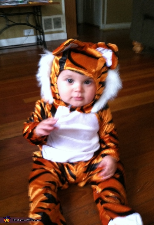 angry tiger, Tiger Baby Costume