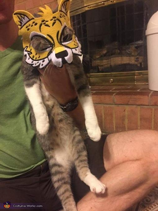 Tiger Cat Costume