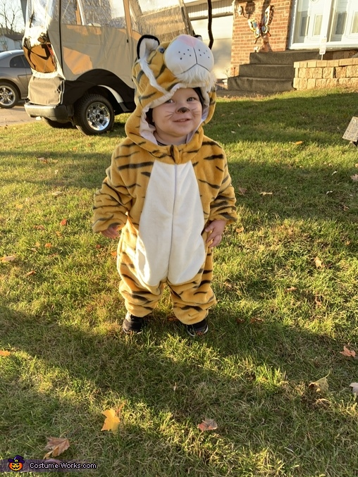 Baby Tiger, Tiger King Costume