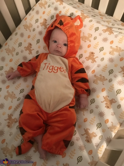 Tigger Costume