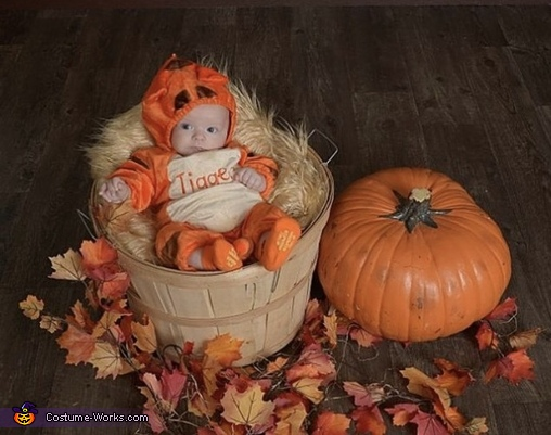 Tigger in a basket, Tigger Costume