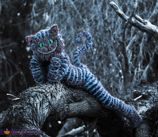 Tim Burton's Cheshire Cat Costume
