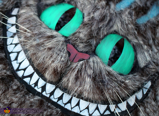 close up of his face, Tim Burton's Cheshire Cat Costume