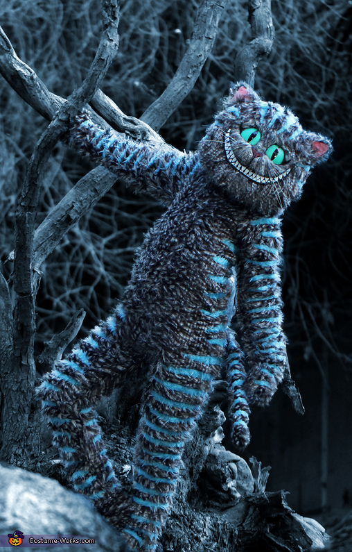 the front of the costume, Tim Burton's Cheshire Cat Costume