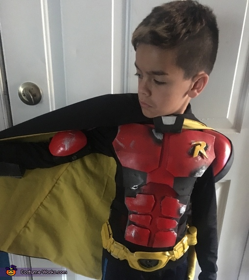 Tim Drake Robin Homemade Costume