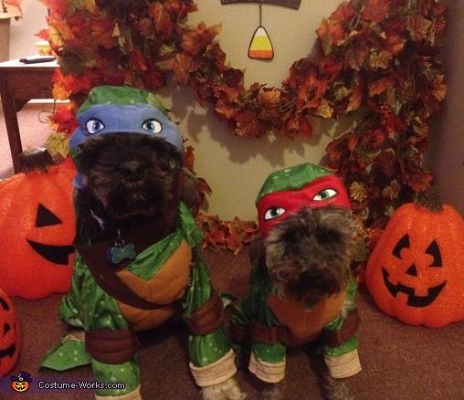 TMNT Dogs Costume