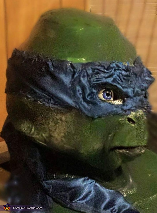 TMNT Leonardo Homemade Costume