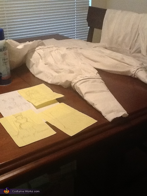 Sleeves and sketches, Toilet Paper Bride of Frankenstein Costume