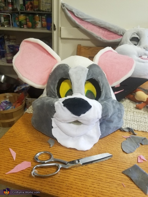 Tom and Jerry Homemade Costume