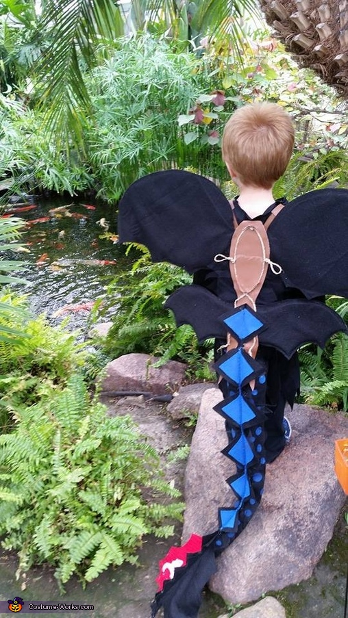 Toothless Alpha Boy's Costume