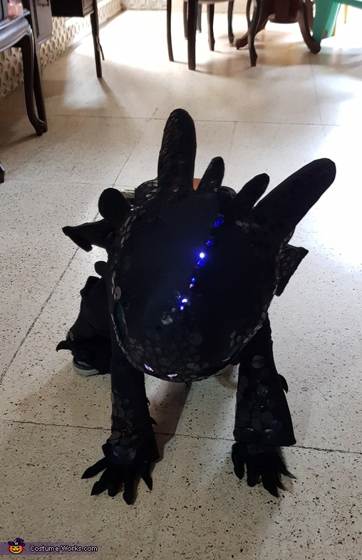 Toothless the Dragon Costume