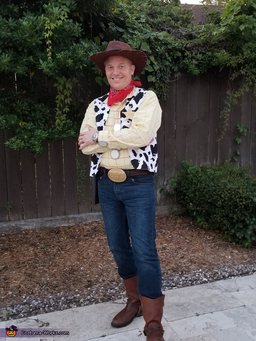 Woody, Toy Story Family Costume