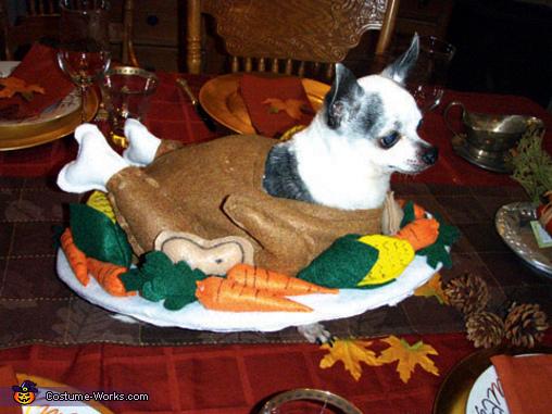 Cooked Turkey Dog Costume