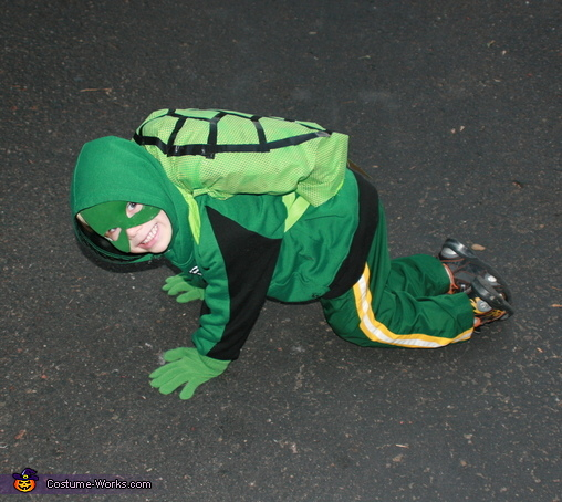 Turtle costume, Turtle Costume