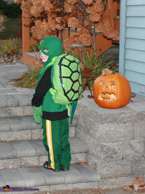 From the back, Turtle Costume