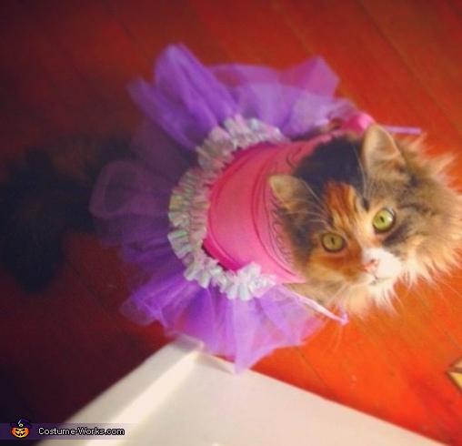 Tutu Cat Costume