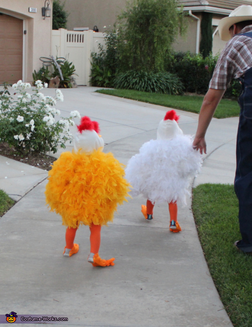Twin Baby Chicks Homemade Costume