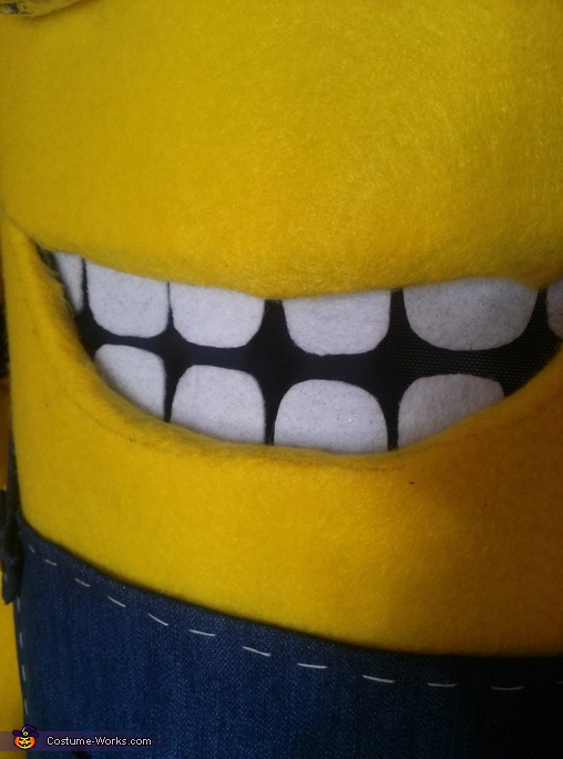 Pearly whites!, Twin Minions Costume