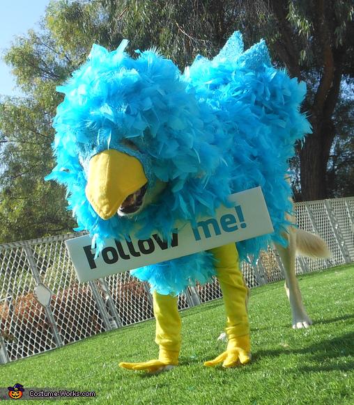 Twitter Critter Dog Costume