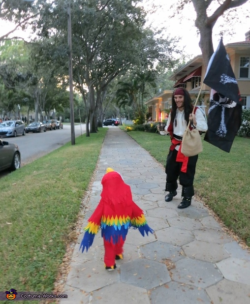 Plundering the Neighborhood , Two Pirates and a Parrot Family Costume