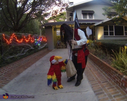 Stealing the neighbors loot, Two Pirates and a Parrot Family Costume