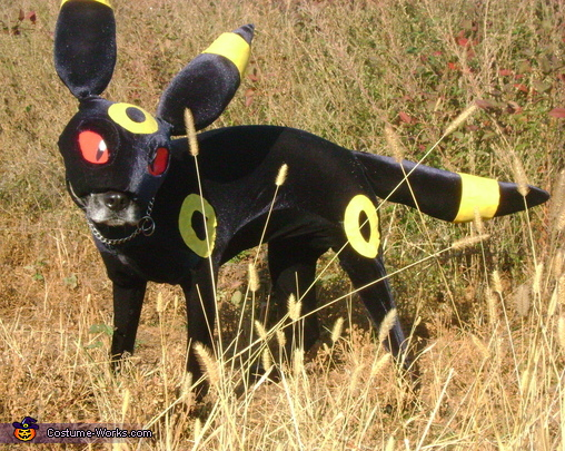 My mask is crooked! Fix it! X3, Umbreon Costume