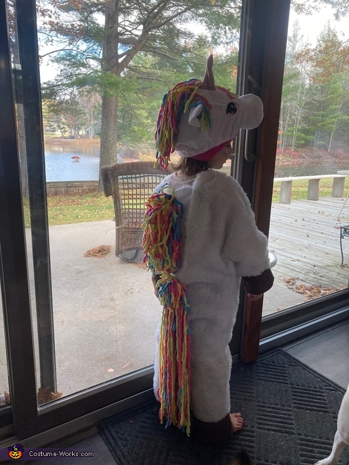 Unicorn Homemade Costume