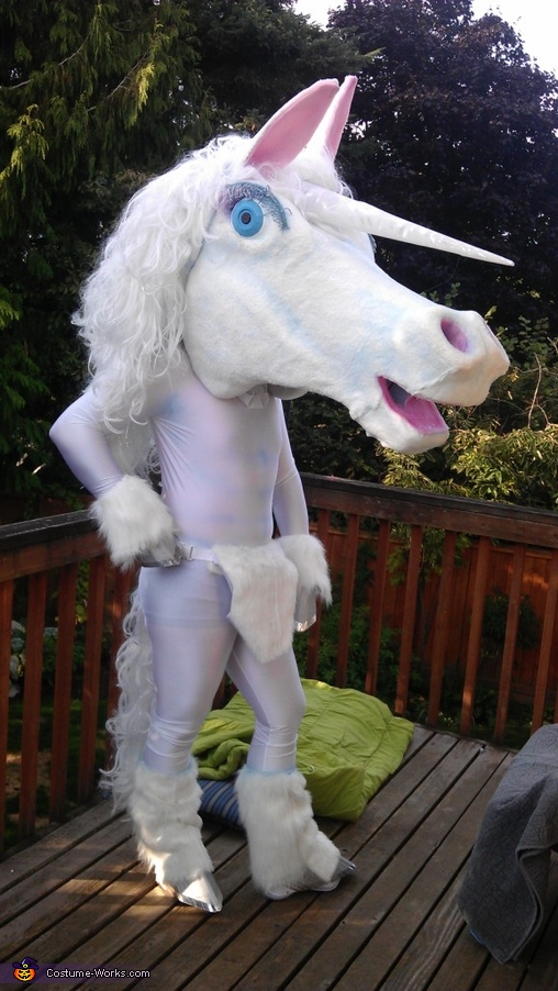 Unicorn Costume & DIY Unicorn Costume