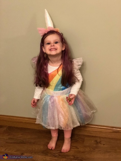 Cheesy Unicorn, Unicorn Costume