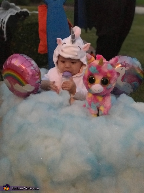 Unicorn in the Clouds Costume