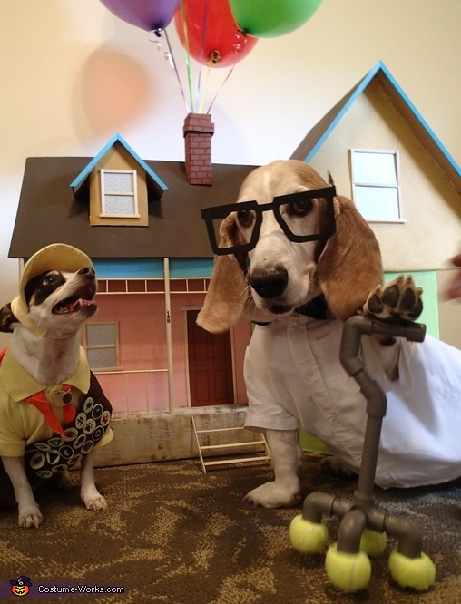 up movie russell and carl dogs costume