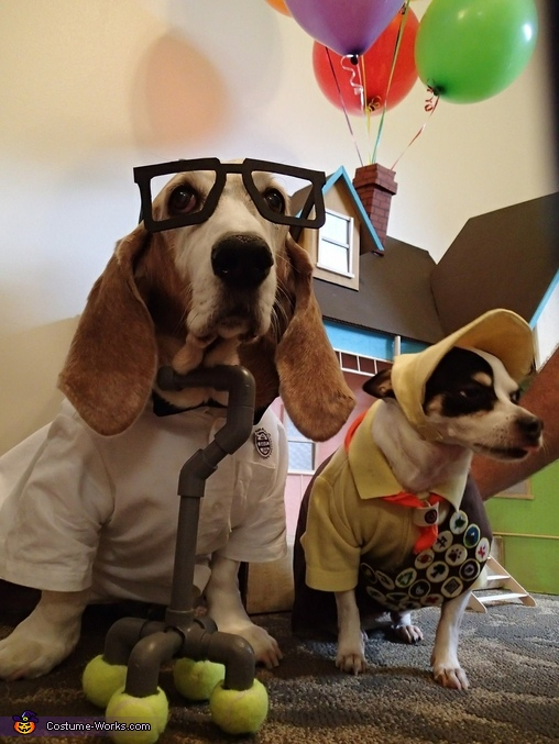 Up movie Russell and Carl Dogs Homemade Costume