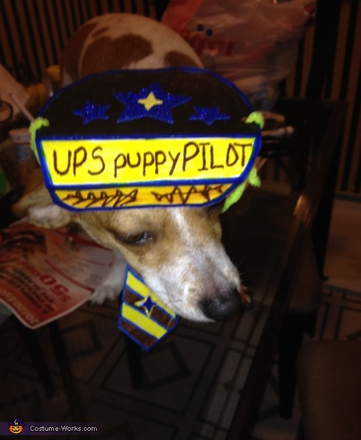 UPS Airplane Homemade Costume