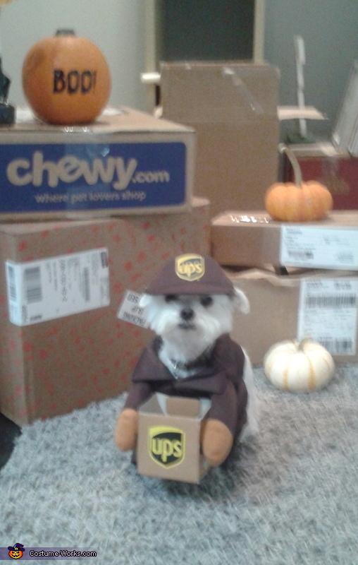 UPS Driver Costume