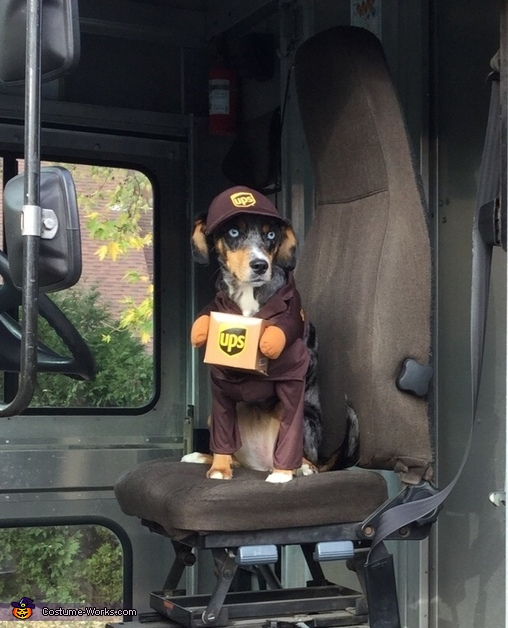 UPS helper, UPS Helper Costume