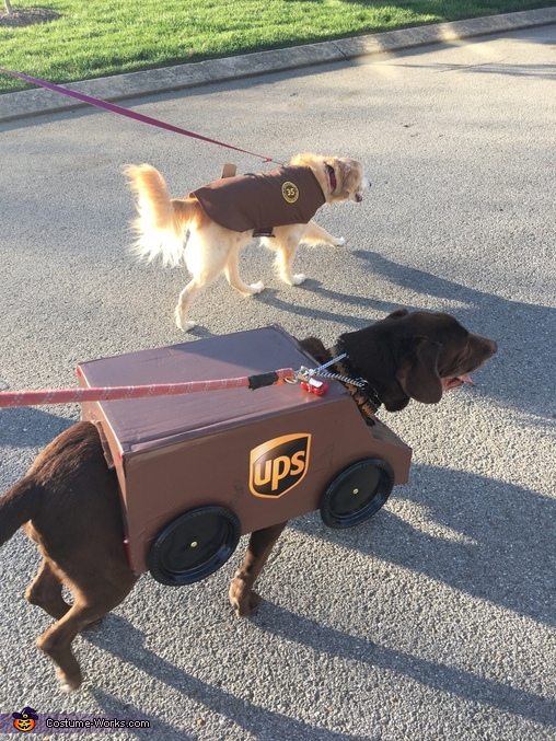 UPS Package Car & Driver Dogs Costume