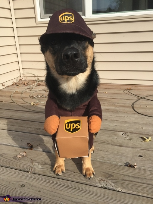 UPS Worker Costume