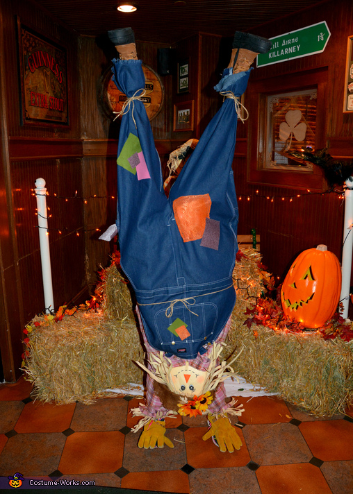 Upside Down Scarecrow Homemade Costume