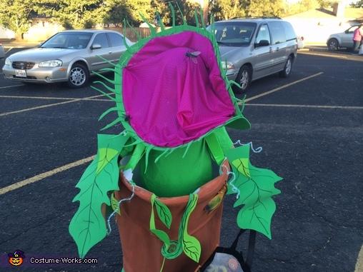 Venus fly trap!, Venus Flytrap Costume