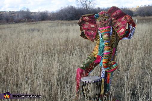 Vibrant African Elephant Homemade Costume