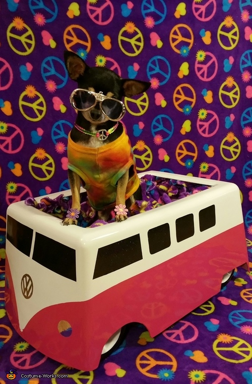 VW Hippie Costume