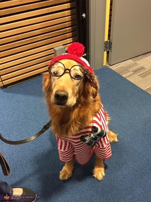 Waldo Costume