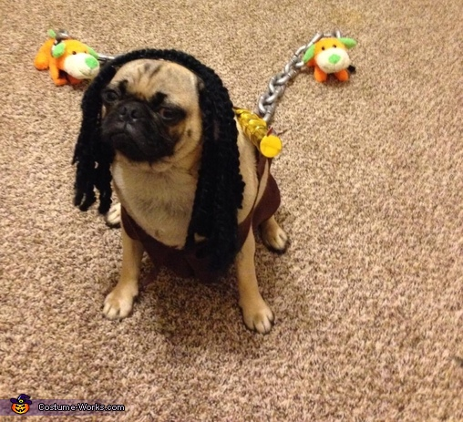 Harley as mishonne , Walking Pugs Costume