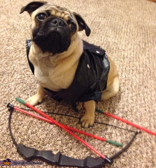 Armani as darryl, Walking Pugs Costume
